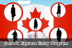 5+1 Tips to improve your Express Entry Profile
